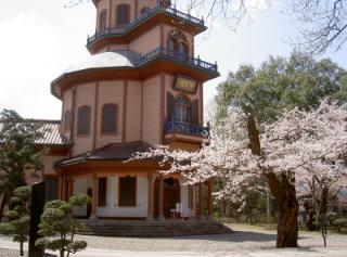 霞城公園 - 桜(山形)